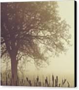 Mist Canvas Print by Odd Jeppesen