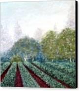 Misty Blue Canvas Print