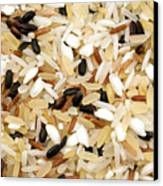 Mixed Rice Canvas Print