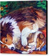 Mom's Love - Shetland Sheepdog Canvas Print by Lyn Cook