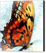 Monarch  Canvas Print by Melodye Whitaker