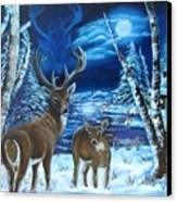 Moonlight Walk Canvas Print