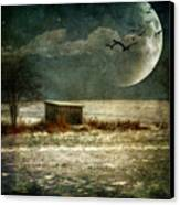 Moonstruck Canvas Print by Lois Bryan