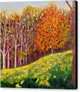 Mooresville 10 11 Canvas Print