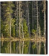 Moose Creek Reservoir Canvas Print