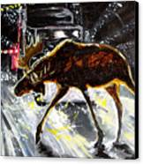 Moose Crossing Canvas Print by Jenn Cunningham