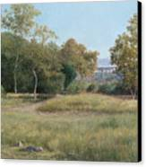 Morning In The Arroyo Seco Canvas Print