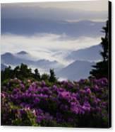 Morning On Grassy Ridge Bald Canvas Print