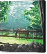 Morning Pasture Canvas Print