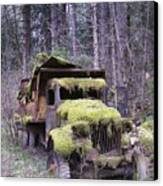 Mossy Truck Canvas Print