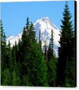 Mount Hood Majestic Canvas Print
