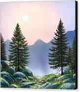 Mountain Firs Canvas Print
