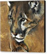 Mountain Lion - Guardian Of The North Canvas Print
