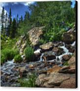 Mountain Stream 3 Canvas Print