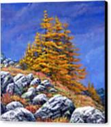 Mountain Tamaracks Canvas Print