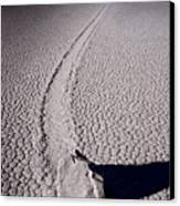 Moving Rocks Number 2  Death Valley Bw Canvas Print by Steve Gadomski