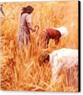 Mowing Harvest Canvas Print by George Siaba