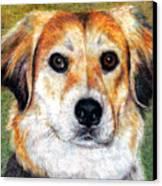 Mr Bojangles Canvas Print by Melissa J Szymanski