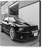 Mustang Alley In Black And White Canvas Print by Gill Billington