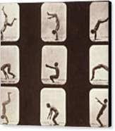Muybridge Locomotion Back Hand Spring Canvas Print by Photo Researchers