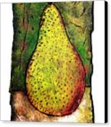 My Favorite Pear One Canvas Print