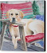 My Molly Canvas Print