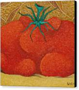 My Tomato  2008 Canvas Print