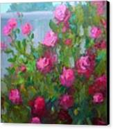 Myback Yard Roses Canvas Print