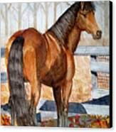 Mystic In Her Paddock Canvas Print by Cheryl Dodd