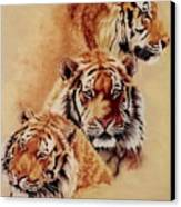 Nanook Canvas Print