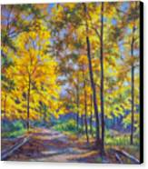 Nature Trail Turn Of Autumn Canvas Print by Fiona Craig