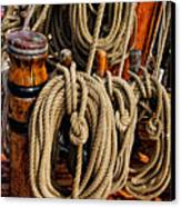 Nautical Knots 17 Oil Canvas Print by Mark Myhaver