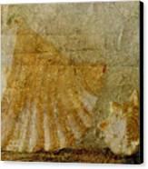 Nautilus1 Canvas Print