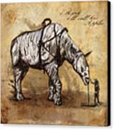 Neobedouin - Cowboy Canvas Print