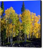 Nevada Fall Canvas Print