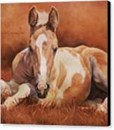 New Paint Canvas Print