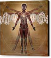 New Vitruvian Woman Canvas Print by Jim Dowdalls and Photo Researchers