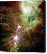 Newborn Stars In The Christmas Tree Canvas Print