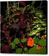 Night Flower's Canvas Print