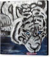 Night Sipper Metallic Paints Canvas Print