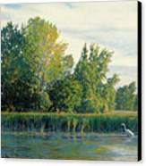 North Of The Grade-great Egret Canvas Print