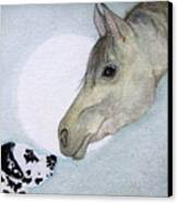 Nose 2 Nose Canvas Print