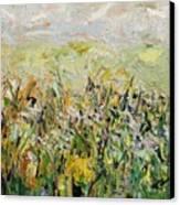 Nose Hill Canvas Print