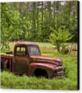 Not Forgotten Canvas Print by Debra and Dave Vanderlaan