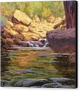 Oak Creek Tributary Canvas Print