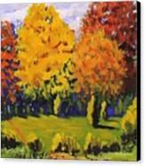 October Woods Canvas Print