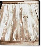 Old Basement Doors Canvas Print by Colleen Kammerer