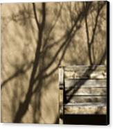 Old Bench Canvas Print