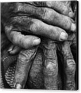 Old Hands 3 Canvas Print by Skip Nall