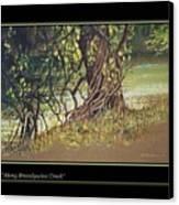 On Brandywine Creek Canvas Print